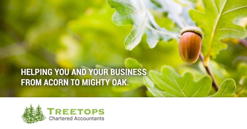 chartered accountants for small businesses in woking