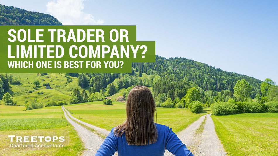 sole trader or limited company which is best